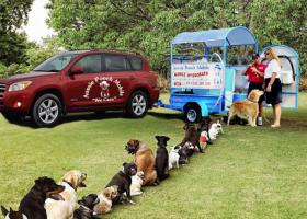 Aussie pooch mobile dog wash solutioingenieria Image collections